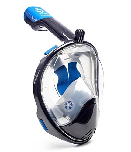 WildHorn Outfitters Snorkel Mask
