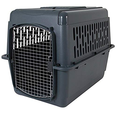 Aspen Heavy Duty Pet Carrier