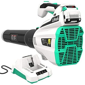 Commercial Leaf Vacuums
